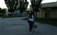 Emma Thomas cruises on campus with training service dog