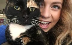 Cat owners celebrate National Cat Day