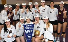 Women's volleyball wins section championship, makes school history