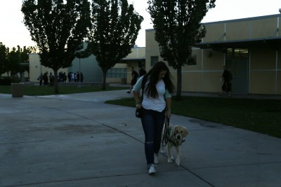 Emma Thomas walks on campus with service dog, Cruiser. Photo by Lily Jones