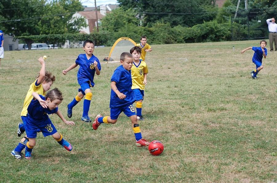 Eight year old kids play soccer match organized as a part of Fairfax Police Youth Club Soccer League. Photo by Jarek Tuszynski. (CC-BY-SA-3.0)