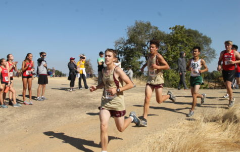 Men's cross country runners describe their bond as a 'family'