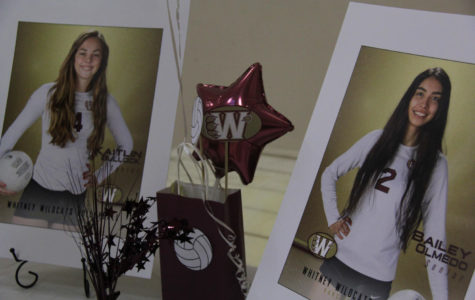 Women's volleyball honors two senior athletes