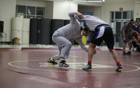Men's varsity wrestling team sets goals for a new season