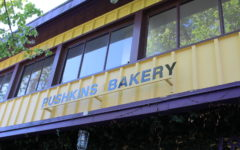 Pushkin's Bakery is the best gluten free and vegan place you need to try
