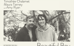 Timothée Chalamet travels through cycle of addiction in 'Beautiful Boy'