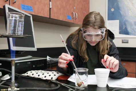 During Ms. Katie Torok's fifth period Honors Chemistry class, Kloe Kelly works on her heat transfer lab. She is measuring the temperature shift when hot and cold water is added to metal. Photo by Daya Khunkhun