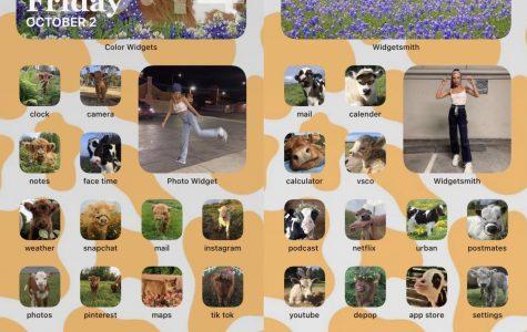 Gabriel Garcia incorporates his favorite animal into his customized home screen. Screenshots by Gabriel Garcia.