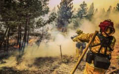 Chris Pombo helps fight the Creek Fire Sept. 9. Photo by Sunny Johnson.